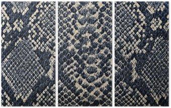 Tryptyk Tekstury skóry węża tle