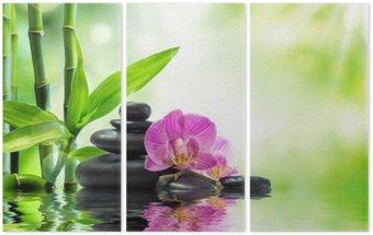 Tryptyk Tło spa - storczyki czarne kamienie i bambusa na wodzie