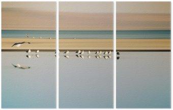 Tryptyk Vogelschwarm w Reihe / Ein kleiner Vogelschwarm w Reihe stehender Möwen einer Brutkolonie jestem Saltonsee w Kalifornien.