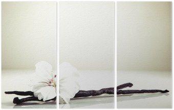 Tryptyk Wanilia i kwiat