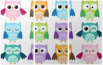 Tryptyk Zestaw 12 kreskówek sowy z różnych emocji