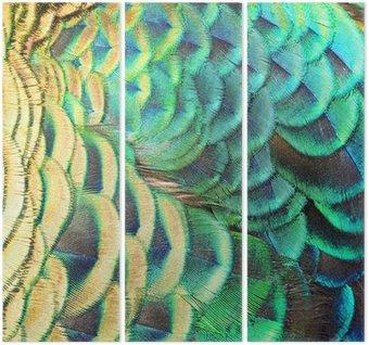 Tryptyk Zielone pawie pióra