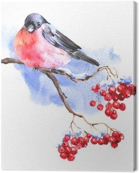 Tuval Baskı Bullfinches Kış Watercolor background
