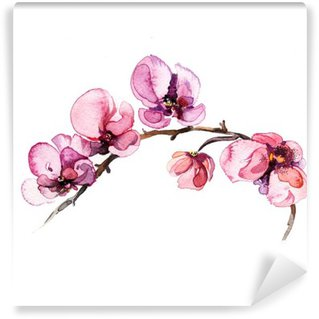Tvättbar Fototapet Akvarell blommor orkidé isolerad på den vita bakgrunden