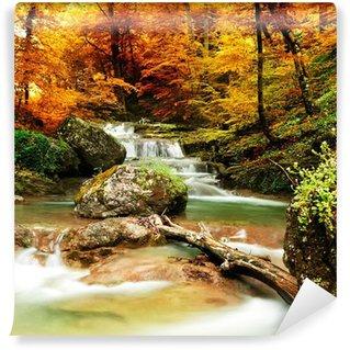 Tvättbar Fototapet Hösten bäck skogen med gula träd
