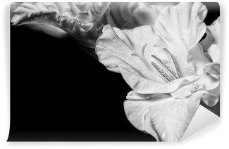 Tvättbar Fototapet Svart och vit gladiolus