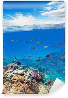Tvättbar Fototapet Underwater korallrev med horisonten och vatten vågor