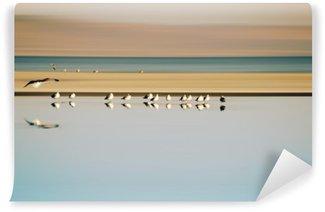 Tvättbar Fototapet Vogelschwarm i Reihe / Ein kleiner Vogelschwarm i Reihe stehender Möwen einer Brutkolonie am Saltonsee i Kalifornien.