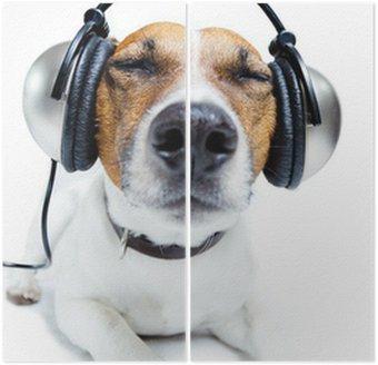 Tweeluik Hond luisteren muziek