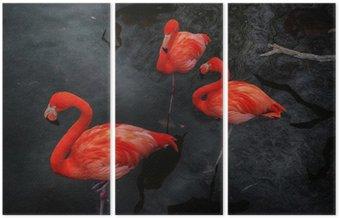 Üç Parçalı Flamingolar 3