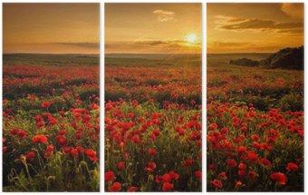 Üç Parçalı Gün batımında Haşhaş alan