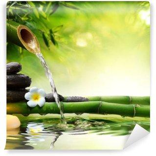 Kylpylä kivi puutarhassa virtaavalla vedellä Vinyyli Valokuvatapetti