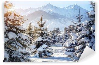 Talvi vuoristomaisemat Vinyyli Valokuvatapetti