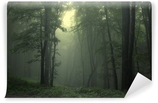 Vihreä metsän sateen jälkeen Vinyyli Valokuvatapetti