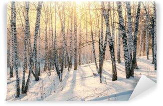Solnedgang i vinterskov Vaskbare Fototapet
