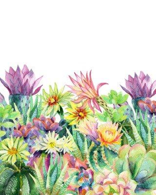 Pixerstick para Todas las Superficies Acuarela floración fondo de cactus