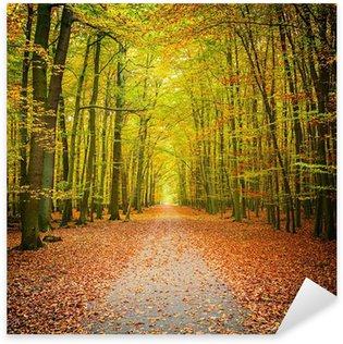 Pixerstick para Todas las Superficies Autumn forest