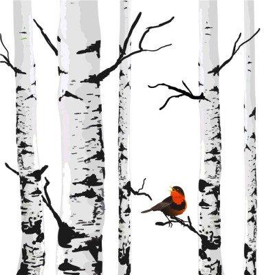 Pixerstick para Todas las Superficies Aves de abedules, dibujo vectorial con elementos editables.
