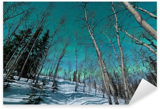 Pixerstick para Todas las Superficies Bandas verdes de la aurora boreal durante el invierno taiga