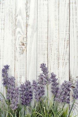 Pixerstick para Todas las Superficies Bouquet Lavender