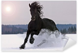 Vinilo Pixerstick Caballo frisón en la nieve