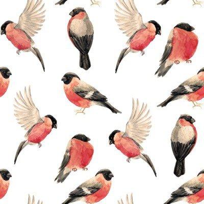 Pixerstick para Todas las Superficies Camachuelo patrón de pájaro de la acuarela