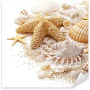 Pixerstick para Todas las Superficies Conchas de mar y arena en el fondo blanco