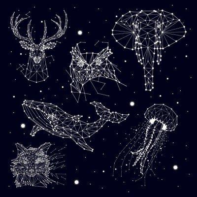 Pixerstick para Todas las Superficies Conjunto de la constelación, elefante, búho, ciervos, ballenas, medusas, zorro, estrella, gráficos vectoriales