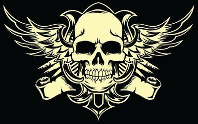 Pixerstick para Todas las Superficies Cráneo con alas