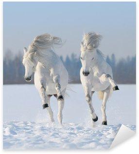 Pixerstick para Todas las Superficies Dos galope los caballos blancos como la nieve