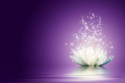 Pixerstick para Todas las Superficies Flor loto