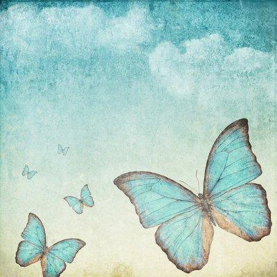 Pixerstick para Todas las Superficies Fondo de la vendimia con una mariposa azul