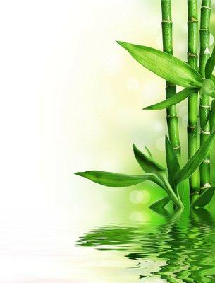 Pixerstick para Todas las Superficies Frontera de bambú