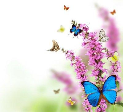 Pixerstick para Todas las Superficies Hermosa flor de fondo con mariposas exóticas