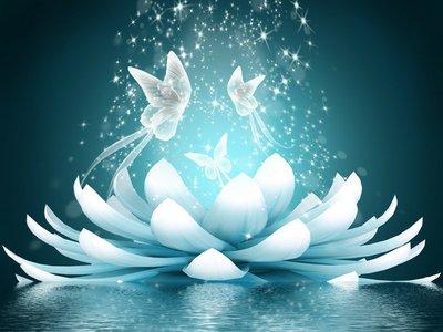 Pixerstick para Todas las Superficies Hermosa flor de loto