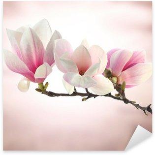 Pixerstick para Todas las Superficies Magnolia