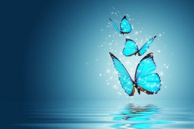 Pixerstick para Todas las Superficies Mariposa