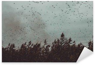 Vinilo Pixerstick Montón de pájaros que vuelan cerca de la caña en un estilo vintage cielo- oscuro blanco y negro