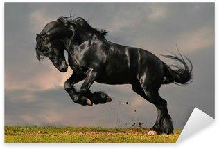 Pixerstick para Todas las Superficies Negro friesian galope caballo en la puesta del sol