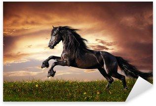 Pixerstick para Todas las Superficies Negro galope caballo frisón