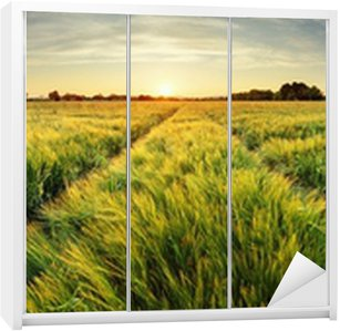 Vinilo para Armario Paisaje rural con campo de trigo en la puesta del sol
