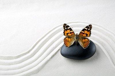 Pixerstick para Todas las Superficies Piedra del zen con la mariposa