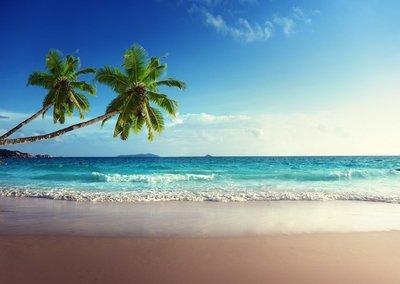 Pixerstick para Todas las Superficies Puesta de sol en la playa de Seychelles