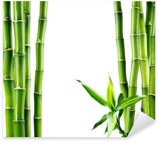 Pixerstick para Todas las Superficies Ramas de la tarjeta de bambú