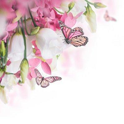 Pixerstick para Todas las Superficies Ramo de rosas blancas y rosadas, mariposa. Fondo floral.