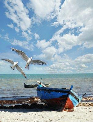 Pixerstick para Todas las Superficies Recordatorio de vacaciones: playa con barco de pesca y gaviotas
