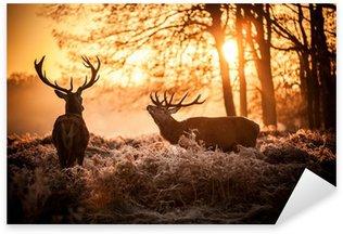 Vinilo Pixerstick Red Deer en domingo por la mañana.