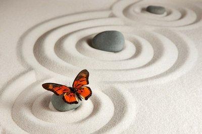 Pixerstick para Todas las Superficies Rocas del zen con la mariposa