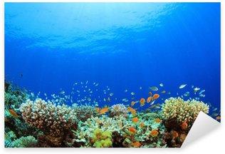 Pixerstick para Todas las Superficies Underwater Coral Reef y pescados tropicales