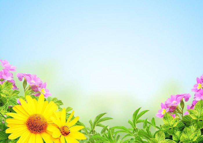 Pixerstick para Todas las Superficies Verano marco - Flores